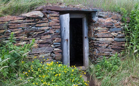1+ images about Root Cellar
