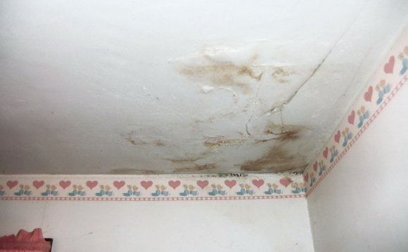 Repair Plaster Ceiling Water