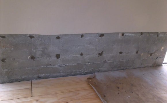 Damp Proofing/Rising