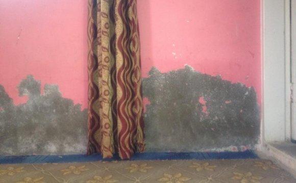 Walls Seepage Repair