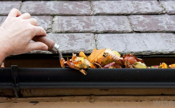 Gutters that are not draining