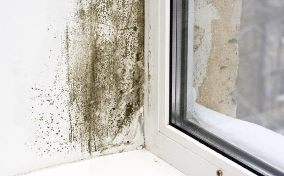 Does cavity wall insulation cause condensation