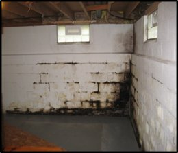 Damaged Basement Wall