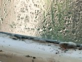 Condensation in house