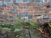 Damp proof walls paint
